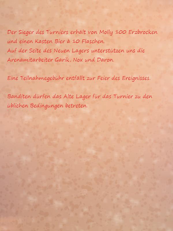Aushang_GemeinsamesTurnier_ALNL_Seite022is65xsn.jpg