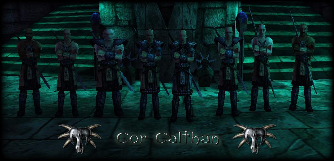 Calthanx21hv9in.jpg