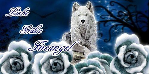 Set_White_Wolf_Siggi_500X250p40gjdip.jpg